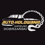 Auto-Holowanie Dobrzanski Icon