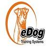 eDog Australia Icon