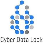 Cyber Data Lock Icon