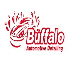 buffaloautodetail Icon