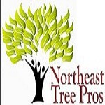 Northeast Tree Pros Icon