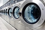 Raina Laundromat Icon