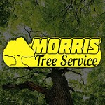 Morris Tree Service Icon