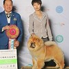 Yan Huang International Kennel Icon