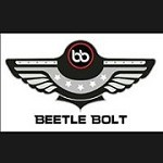 Beetle Bolt Portugal Icon