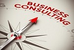Bizconsulting,LLC Icon