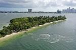 Jet Ski Rental Miami Beach Icon