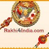 Right Florist Pvt Ltd Icon