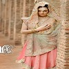 Pakistani Outfits Icon