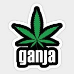 Top Ganja Shop 247 Icon