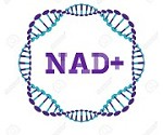 Nad Treatment Florida Icon