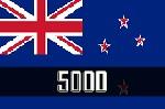 New Zealand Business Email Database  Icon