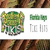 Florida Keys Tiki Hut Builders - Southern Cross Contracting Icon