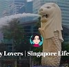 singaporelioncitylovers Icon