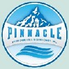Pinnacle Environmental Technologies Icon