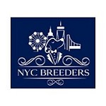 NYC Breeders Icon