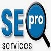 Seo Pro Services Icon