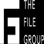 The File Group Icon