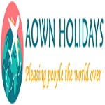 Aown Holiday Icon