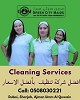 Green City Maids Cleaning Service Icon