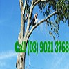 Tidy Tree Care Melbourne Icon