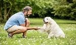 Orange County Dog Trainers Icon