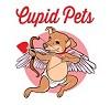 Cupid Pets Icon