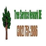 Newark DE Tree Service Icon