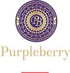 Purpleberry Catering Icon