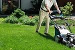 F & F Lawn Service Icon