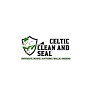 Celtic Clean and Seal Icon