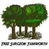 Tree Surgeon Tamworth Icon