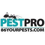 Pest Pro Icon