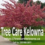 Tree Care Kelowna Icon