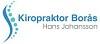 Kiropraktor Borås Icon