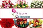 http://flowersgiftsnepal.com/f Icon
