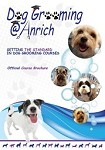 Dog Grooming @ Anrich