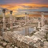 Jordan Private Tours and Travel Icon