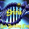 sriria Icon