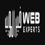Web Experts Icon