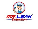 Mr. Leak Detection of Pooler