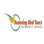 Rental Car Kingston Jamaica Icon