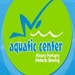 Aquatic Center Icon
