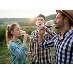 Niagara On The Lake Wine Tours Icon