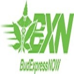 Bud Express Now Icon