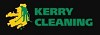 Kerry Cleaning Icon