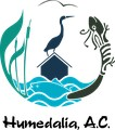 Humedalia, AC Icon