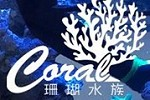 Coral Aquarium Engineering Company Ltd Icon