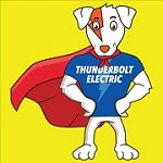 Thunderbolt Electric Icon