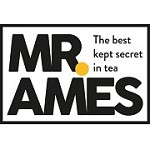 Mr Ames Icon